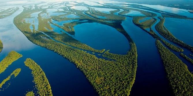 10 faits Prouvés sur la forêt amazonienne 10