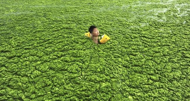 Lac Pollué en Chine