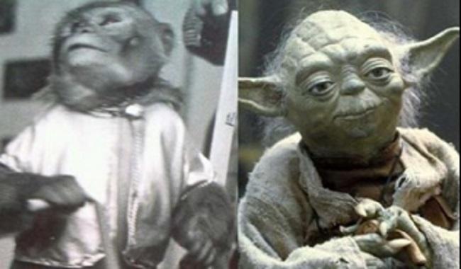 Yoda joué par un singe