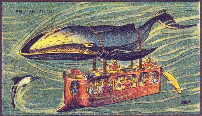 Baleine bus
