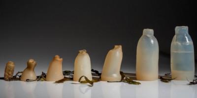 Alternative bouteille plastique
