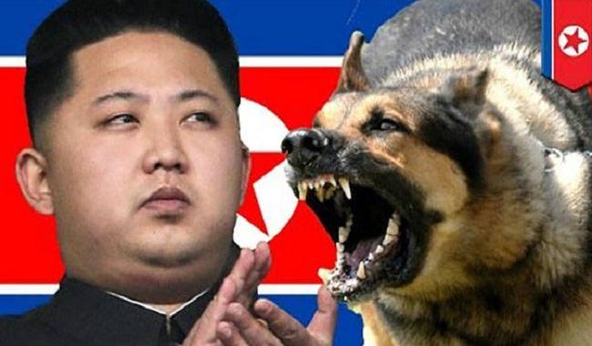 Kim tue son oncle en le jetant dans une cage pleine de chiens