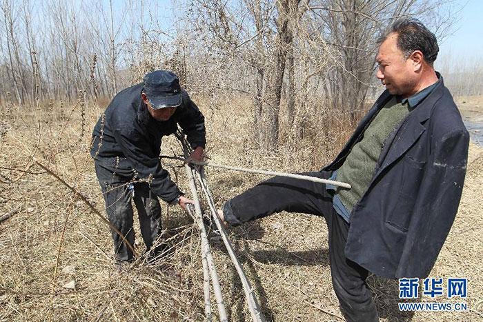 Aveugle et amputé plantent des boutures d'arbres