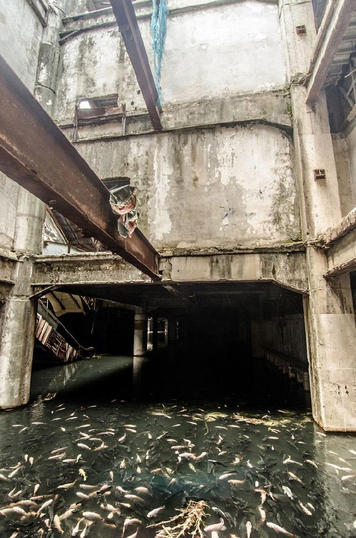 Centre commercial abandonné Thailande
