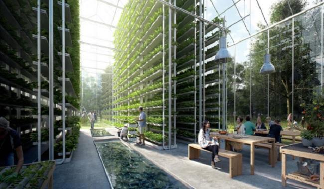 Fermes verticales Eco-village Pays-Bas