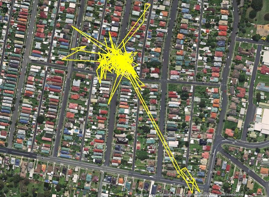GPS traque chat la nuit