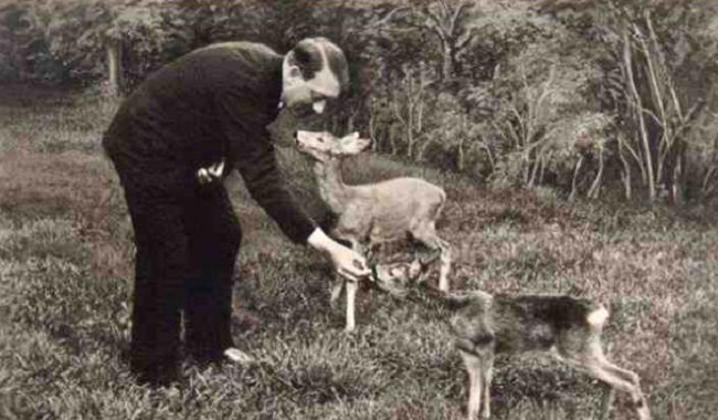 Hitler était végétarien
