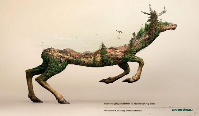 Robin Wood exposition Détruire la Nature c'est détruire la Vie