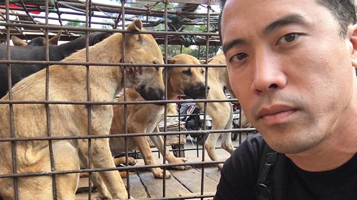 Ching activiste sauve de schiens en Chine (1)