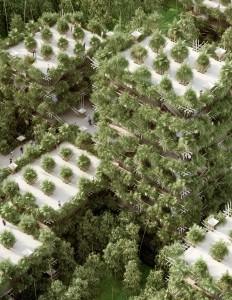 Complexe treehouse bambou écolo