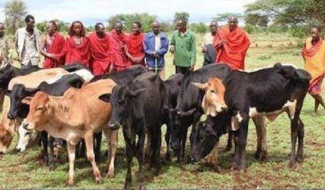 Tribu Masaï fait un don aprés les attentats du 11 septembre