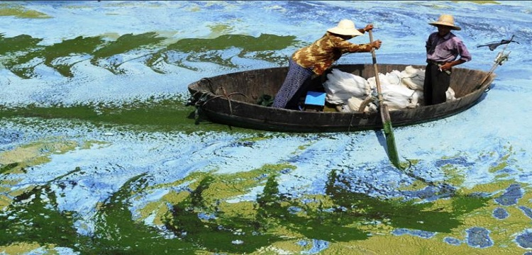 Lac polluée Chine