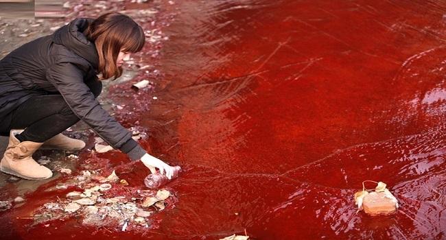 Rivière Polluée en Chine