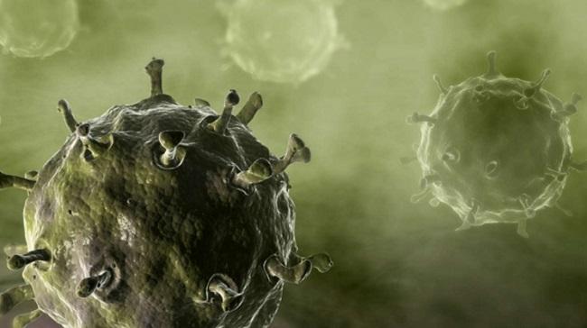 Virus créé par l'homme