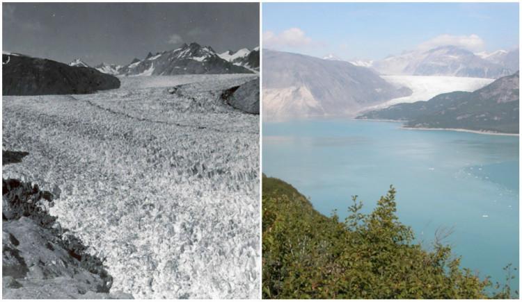 Le glacier Muir en Alaska (1)