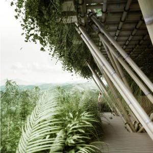 Bambou treehouse écologique