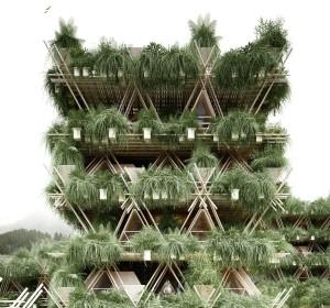 Plan de la treehouse en bambou