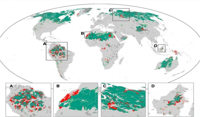Zone de nature restante sur la planète