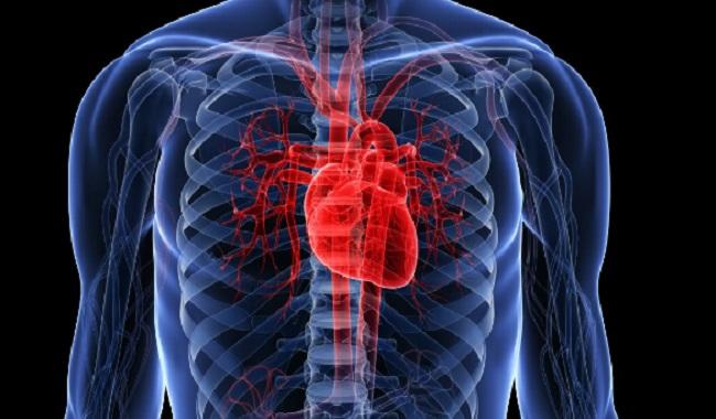 Le coeur souffre de la consommation de drogue